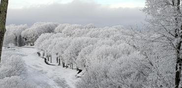 Snow at Beech Mountain
